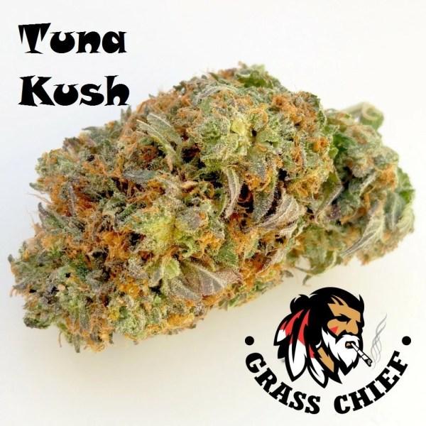 Tuna Kush on Grass Chief