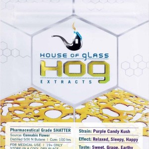 Pharmaceutical-Grade-Shatter_Cannabis-Extract_purple-candy-kush-Grass-Chief