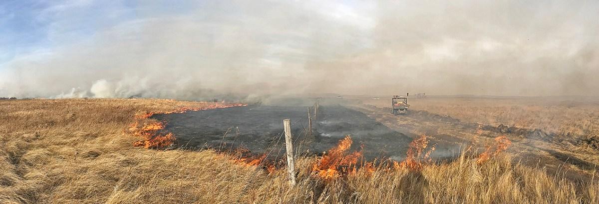 Firefighters battle Ochapowace wildfire