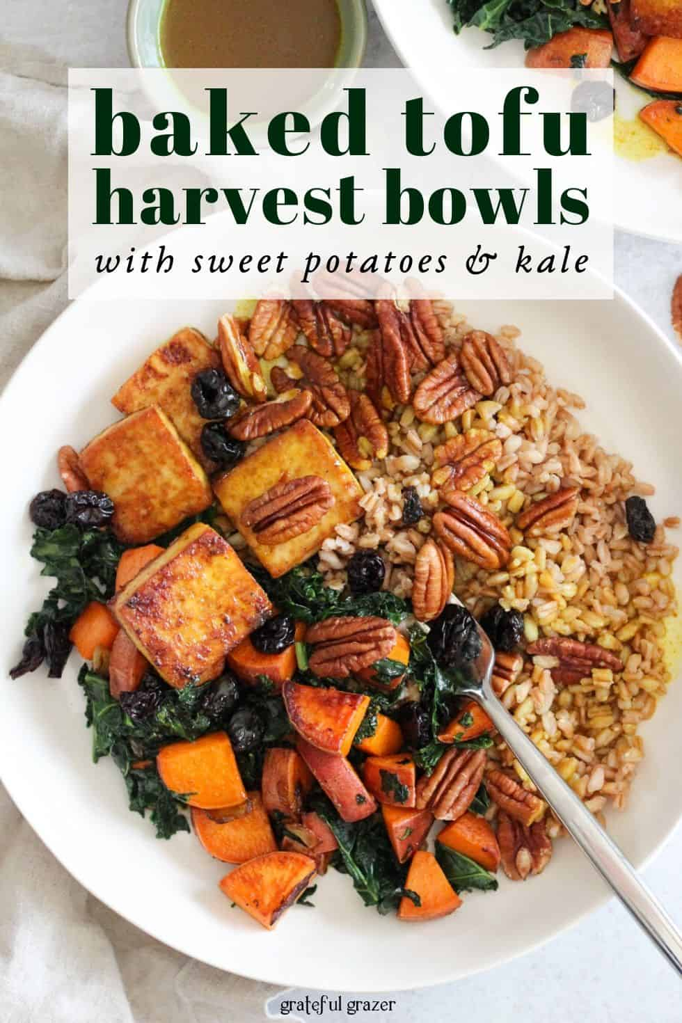 "grain bowl in white bowl with cream napkin and text that reads, ""baked tofu harvest bowls with sweet potatoes and kale."""