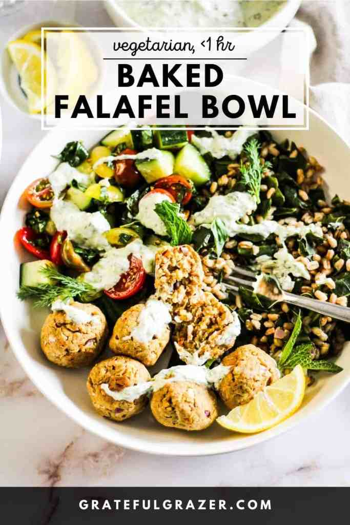 """Falafel Bowl with tzatziki sauce, grains, and tomato-cucumber salad and text that reads, """"Vegetarian,"""