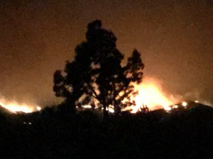 Vineyard Fires in California - Fire Photos from California - CA Winemaking News