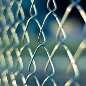 Gratitude Behind Bars: Ashley Law