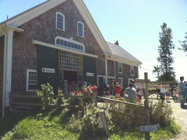 We stopped at Russell Orchard on the way to the beach. I love this place. If you go, get the cider donuts. YOU HAVE TO.