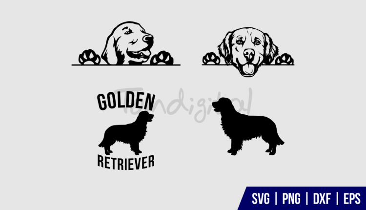 Golden Retriever SVG