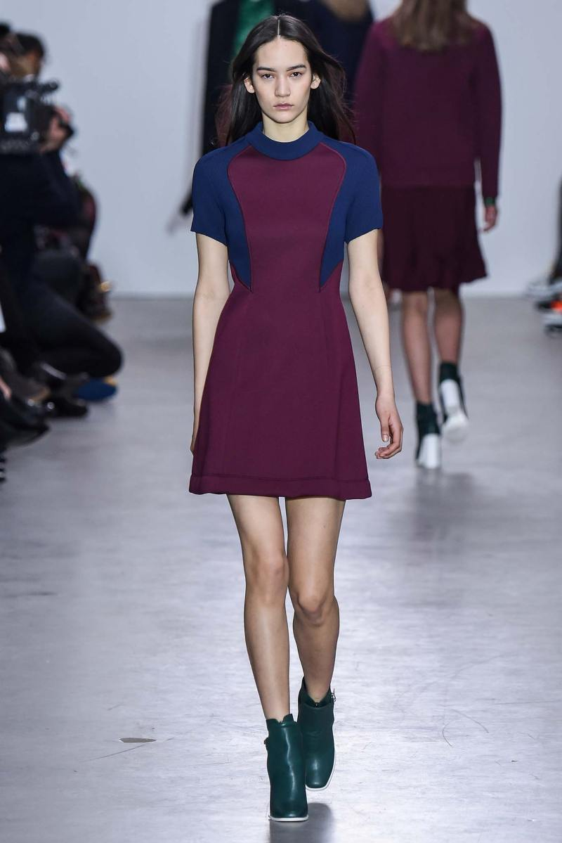 Cédric Charlier Ready to Wear FW 2015 PFW (10)