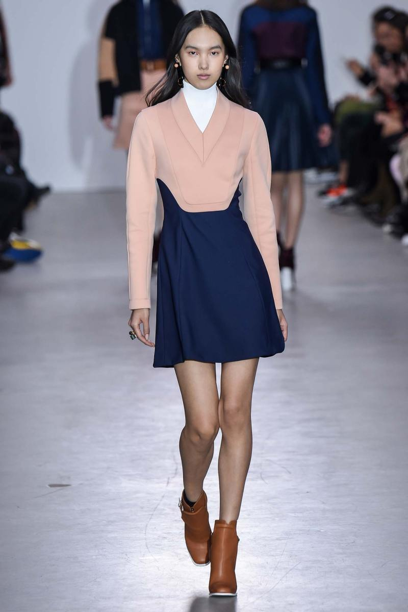 Cédric Charlier Ready to Wear FW 2015 PFW (23)