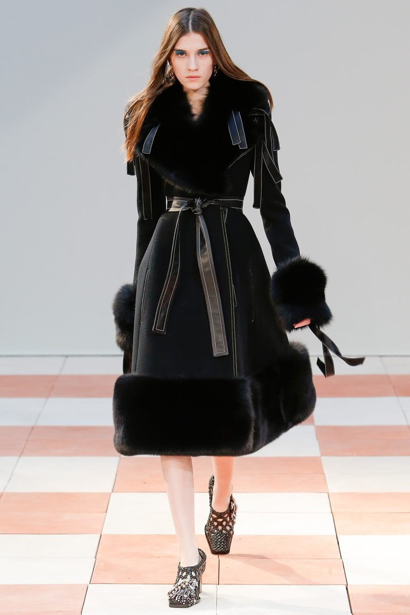 Céline Ready to Wear FW 2015 PFW (20)