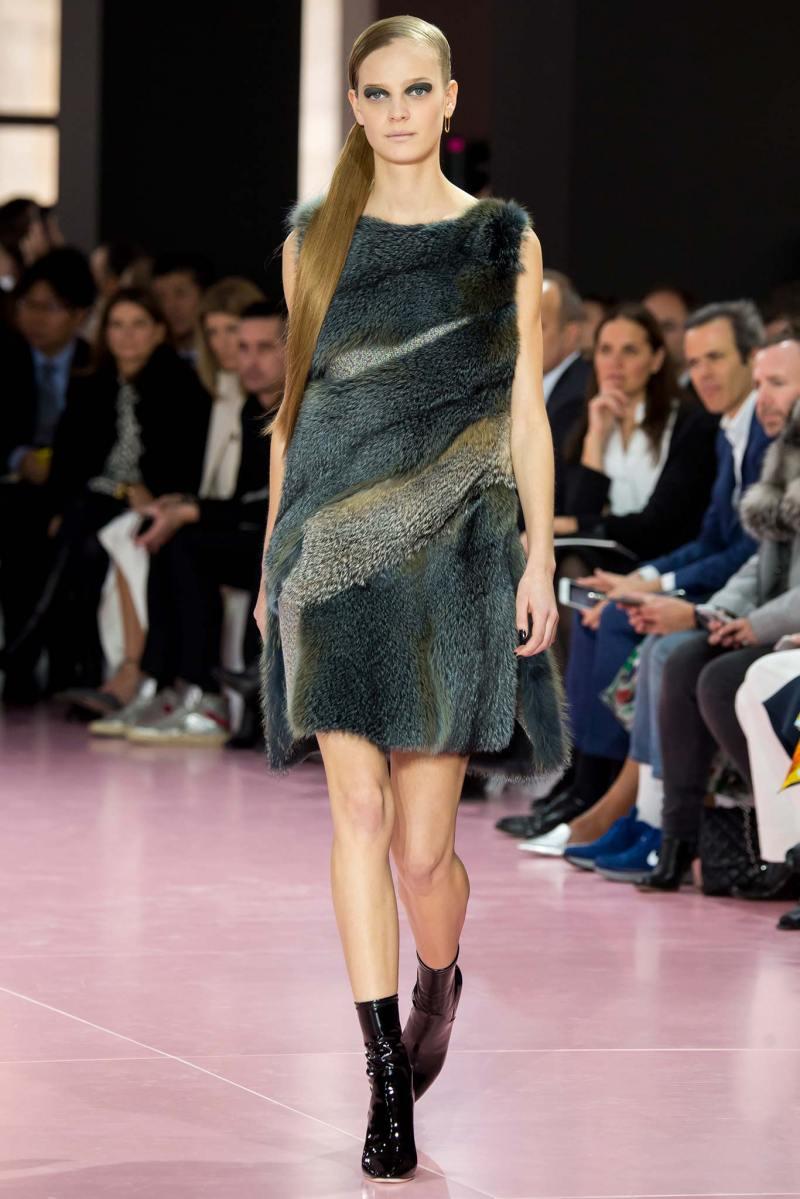 Christian Dior Ready to Wear fw 2015 pfw (31)