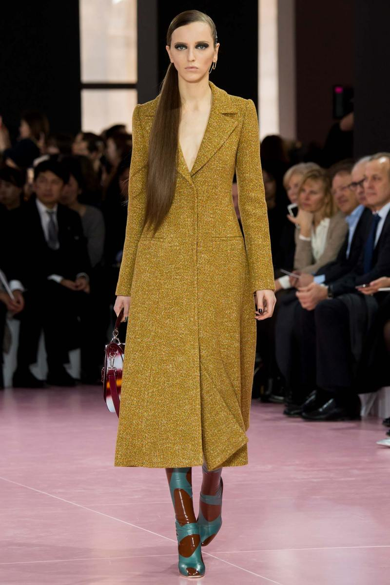 Christian Dior Ready to Wear fw 2015 pfw (42)