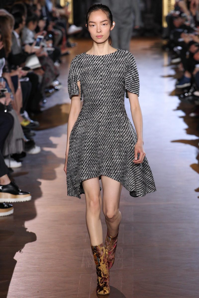 Stella McCartney Ready to Wear FW 2015 PFW (19)
