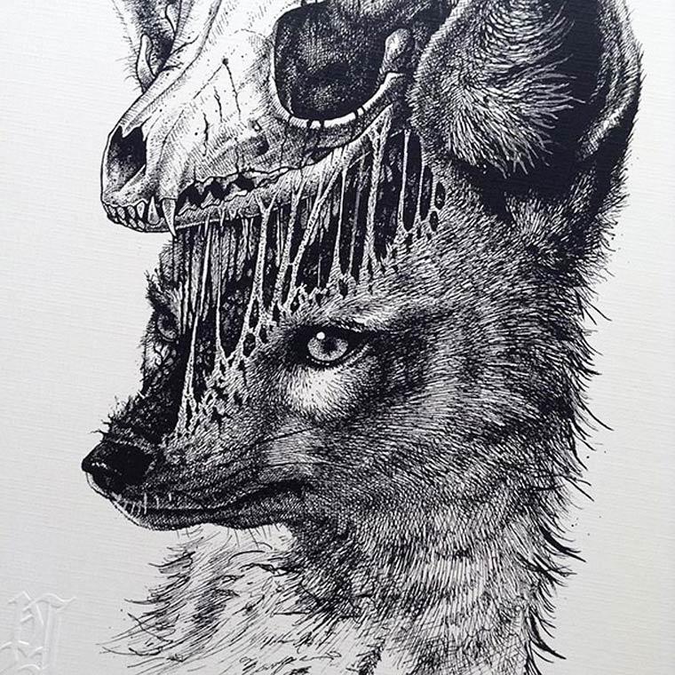 Flesh and Bone Illustrations by Paul Jackson (7)