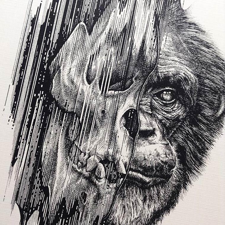 Flesh and Bone Illustrations by Paul Jackson (8)
