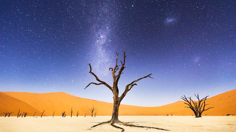 A Night at Deadvlei – Photo by Beth McCarley