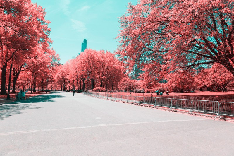 New York in Infrared Photography Series (7)