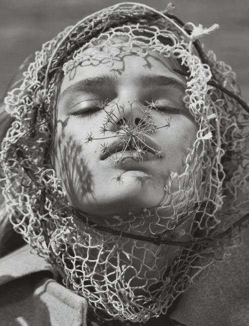 Stella Lucia by Txema Yeste (11)