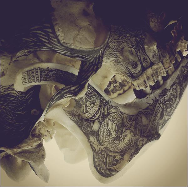 Illustrations on Skulls by DZO Olivier (4)
