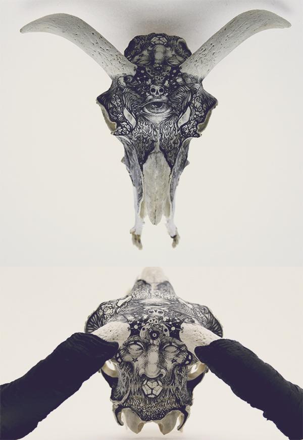 Illustrations on Skulls by DZO Olivier (6)