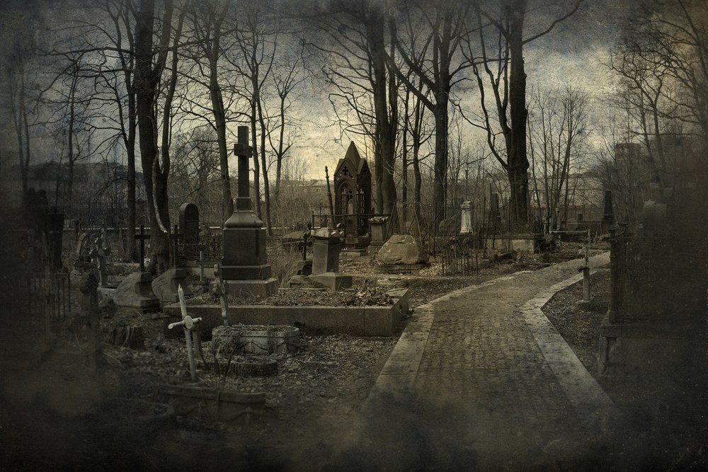 The Afterlife: The Seven Phases of Death