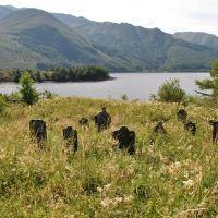 Eilean Munde - graveyard island