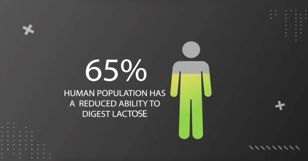 myths-dairy-and-lactose-diet-intolerances