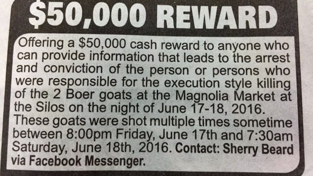 The ad in the Waco Tribune-Herald offered a $50,000 reward for any information that leads to...