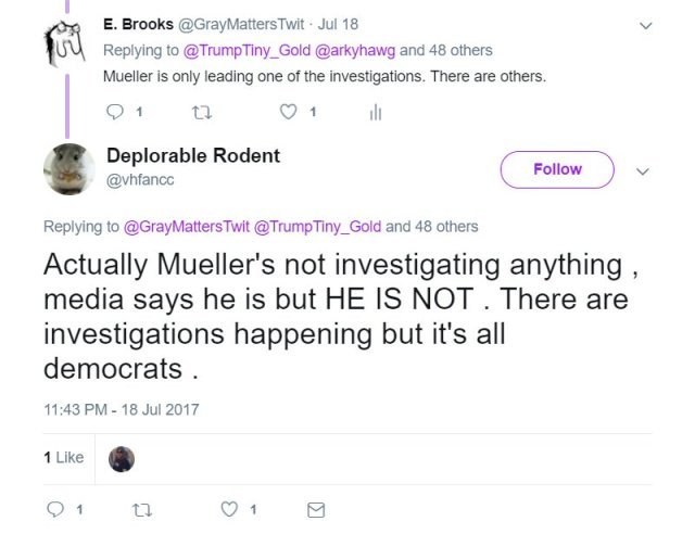 Tweet from Deplorable Rodent saying Mueller isn't really investigation anything. Trumpette lives in much the same fantasy world as this twitter hamster does.