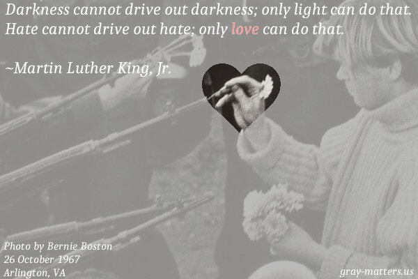 gray-matters.us meme: flower power. Original photo by Bernie Boston. MLK Jr. message: Darkness cannot drive out darkness; only light can do that. Hate cannot drive out hate; only love can do that. Please do not edit the image, and when you share, include a link to this gray-matters post (Only Love).