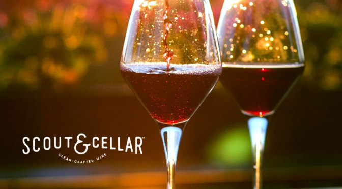Scout & Cellar Wine: My Story