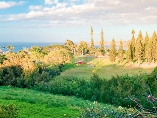 View of the golf course in Kapalua in Maui