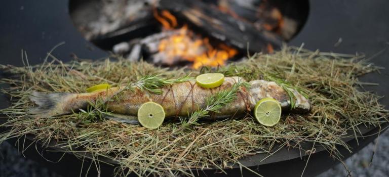 Feurring-Rezept: Zander auf Heu mit Brennnessel-Risotto und Kohlrabi aus der Glut