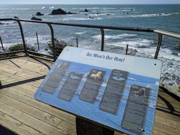 Info Board at Cape Arago State Park