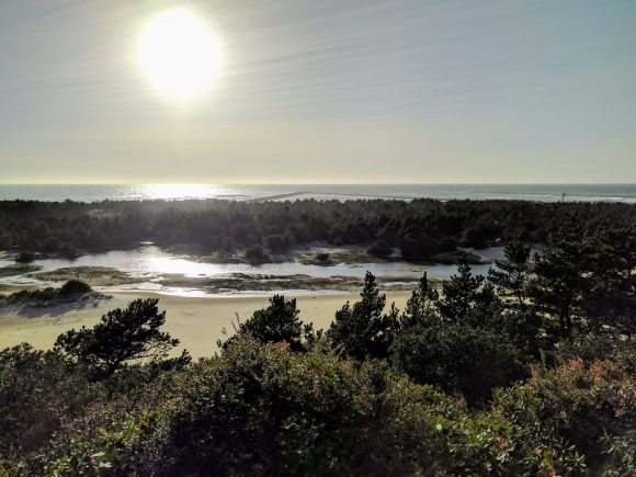 Sand Dunes Meet the Ocean and Forest, Oregon