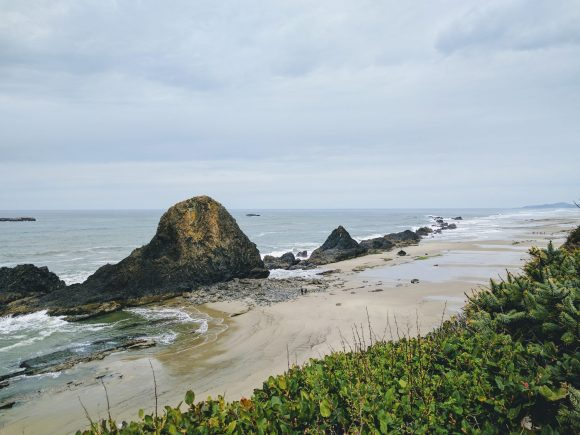 Seal Rock Shore During Low Tide