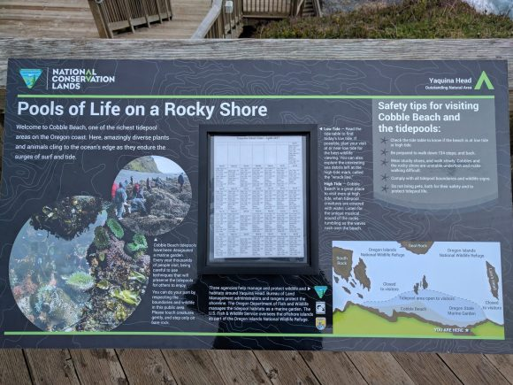 Information Board at Cobble Beach