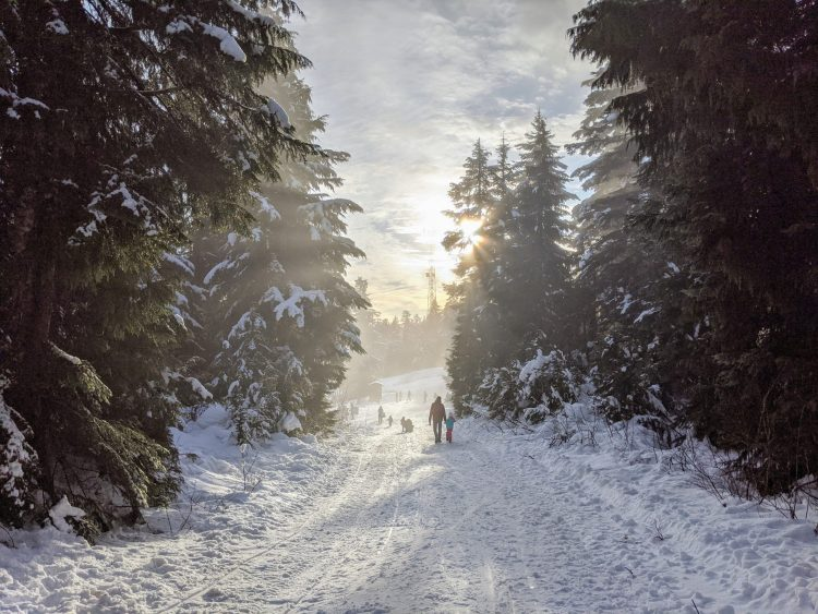 Seymour Mountain, Vancouver