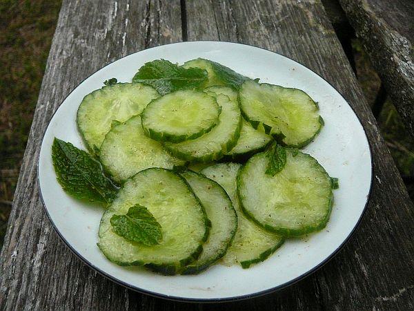 salatka ogórkowa z mietą