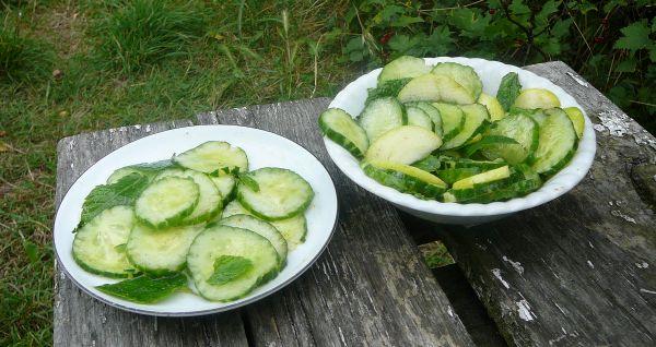 salatka ogórkowa z mietą i z papierówką