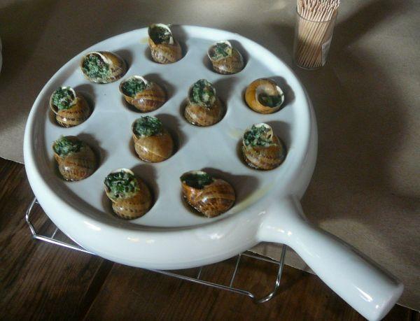 gruczno ślimaki