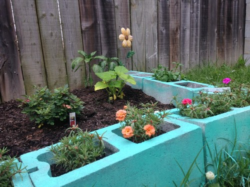 Fertilizer Line Raised Bed