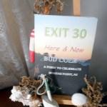 Exit 30 by Bud Cole