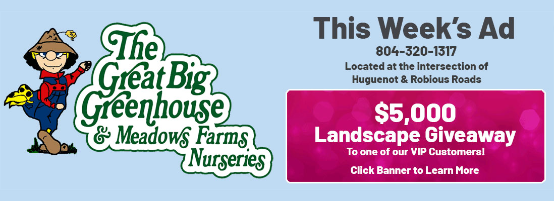 The Great Big Greenhouse and Meadows Farms Nurseries. What's On Sale This Week. 804-320-1317. Located at the intersection of Huguenot and Robiuous Roads. $5,000 Landscape Giveaway to one of our VIP Customers! Click Banner to Learn More