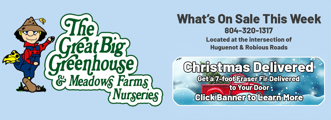 The Great Big Greenhouse and Meadows Farms Nurseries. What's On Sale This Week. 804-320-1317. Located at the intersection of Huguenot and Robiuous Roads. Christmas Delivered. Get a 7-foot Fraser Fir Delivered to Your Door. Click Banner to Learn More