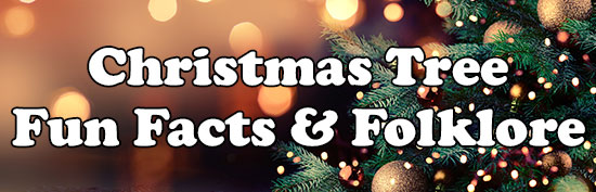 Christmas Tree Fun Facts & Folklore