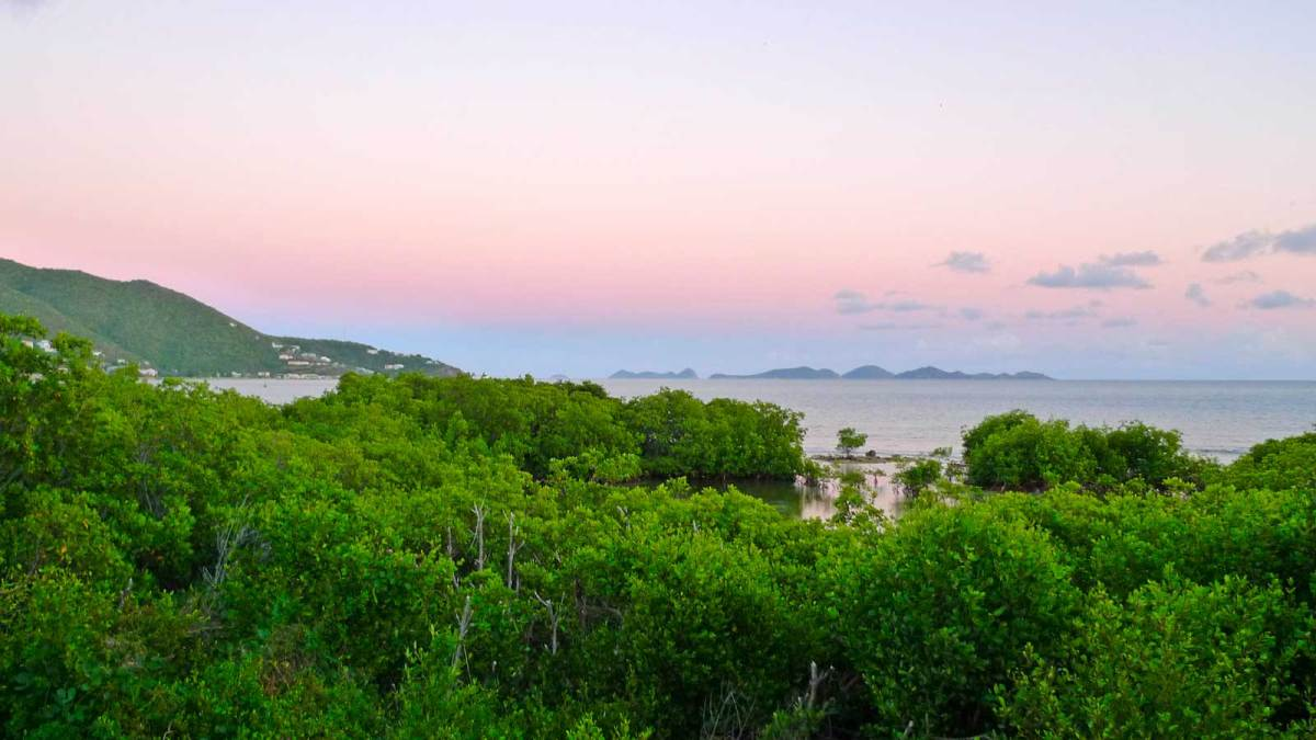 BVI-sunset