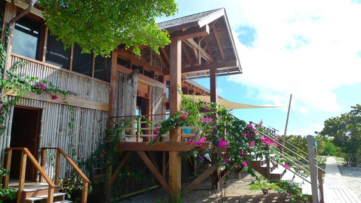 Barbuda-belle-4