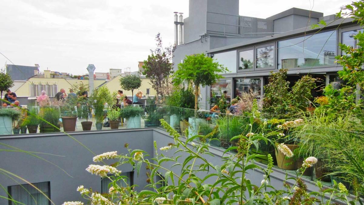 vienna_hotel-ruby-marie-garden