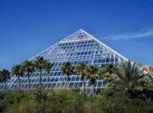 Moody Gardens Holiday Attractions @ Moody Gardens   Galveston   Texas   United States