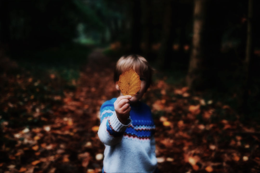 Boy Woods Forest