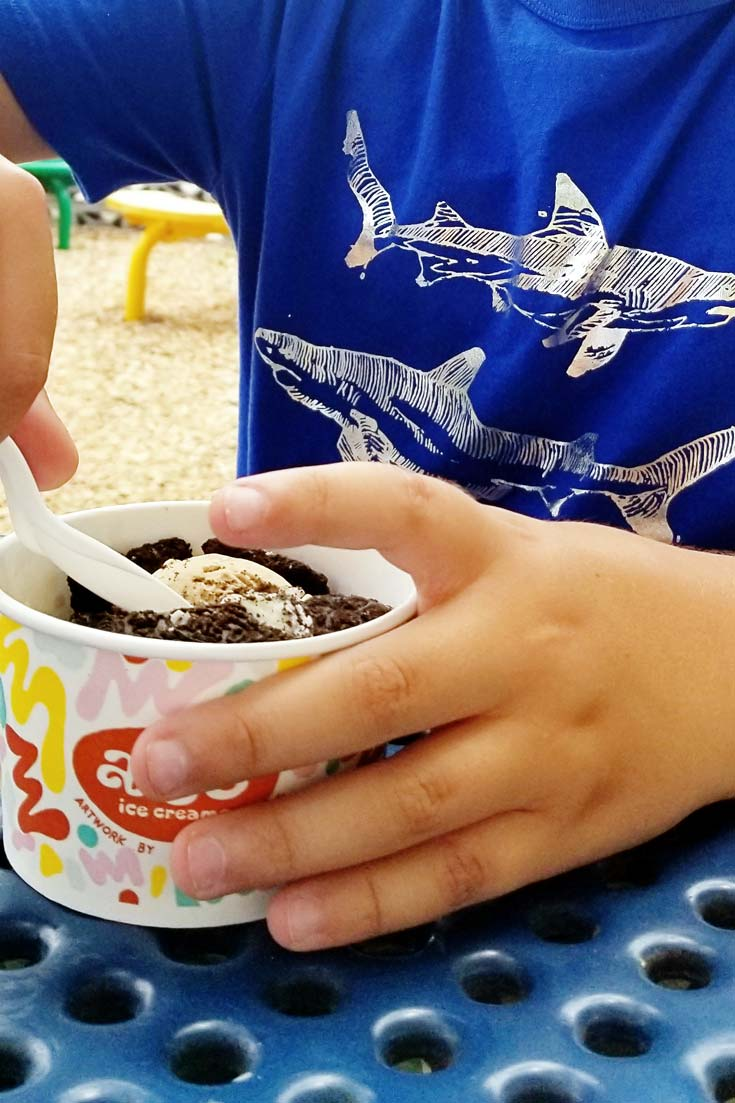 Ultimate Texas Hill Country Roadtrip with Kids   Amy's Ice cream   #austin #texas #hillcountry #travelwithkids #roadtrip